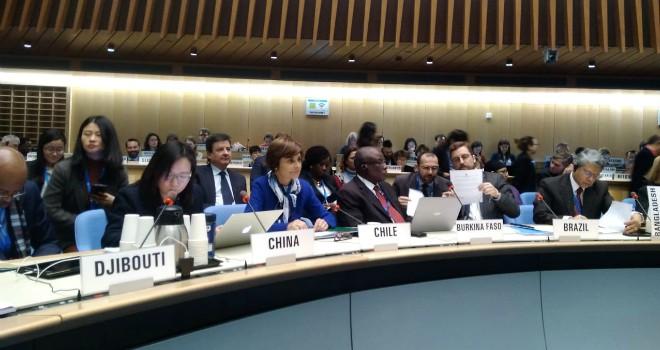 Subsecretaria De Salud Pública Insta A Coordinación Regional Por Nuevo Coronavirus En Sesión Del Consejo Ejecutivo De La OMS En Ginebra