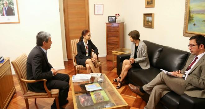 Ministra (s) Paula Daza Se Reúne Con Representante De La OMS En Temas De Envejecimiento Saludable