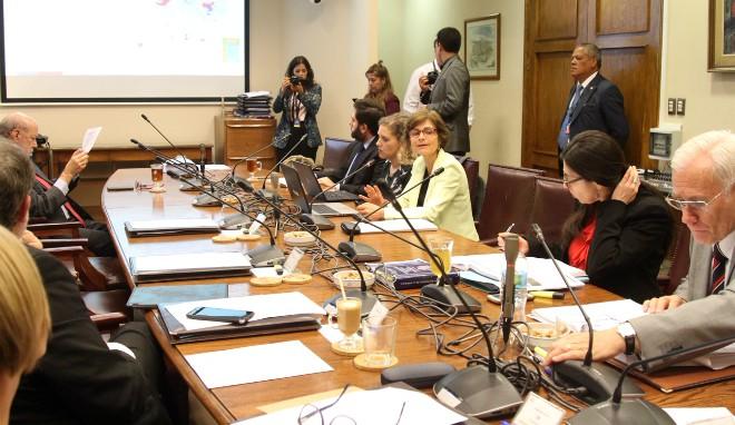 Subsecretaria De Salud Pública Expone A Comisión De Salud Del Senado Plan COVID-19